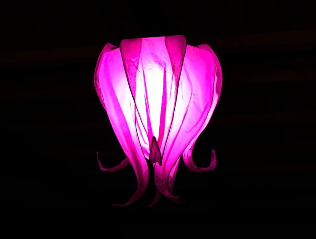 Lampara de papel en forma de flor jeguridos - Lamparas de pie de papel ...